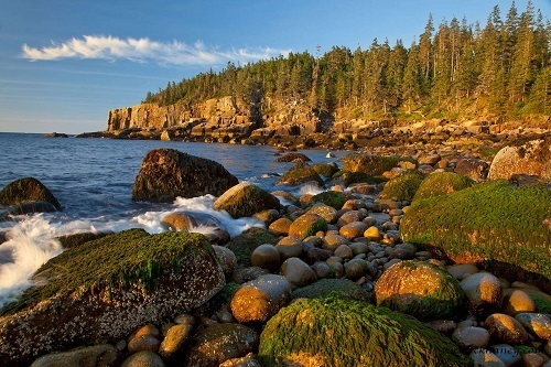 Rocks at Otter Cliffs in Acadia National Park